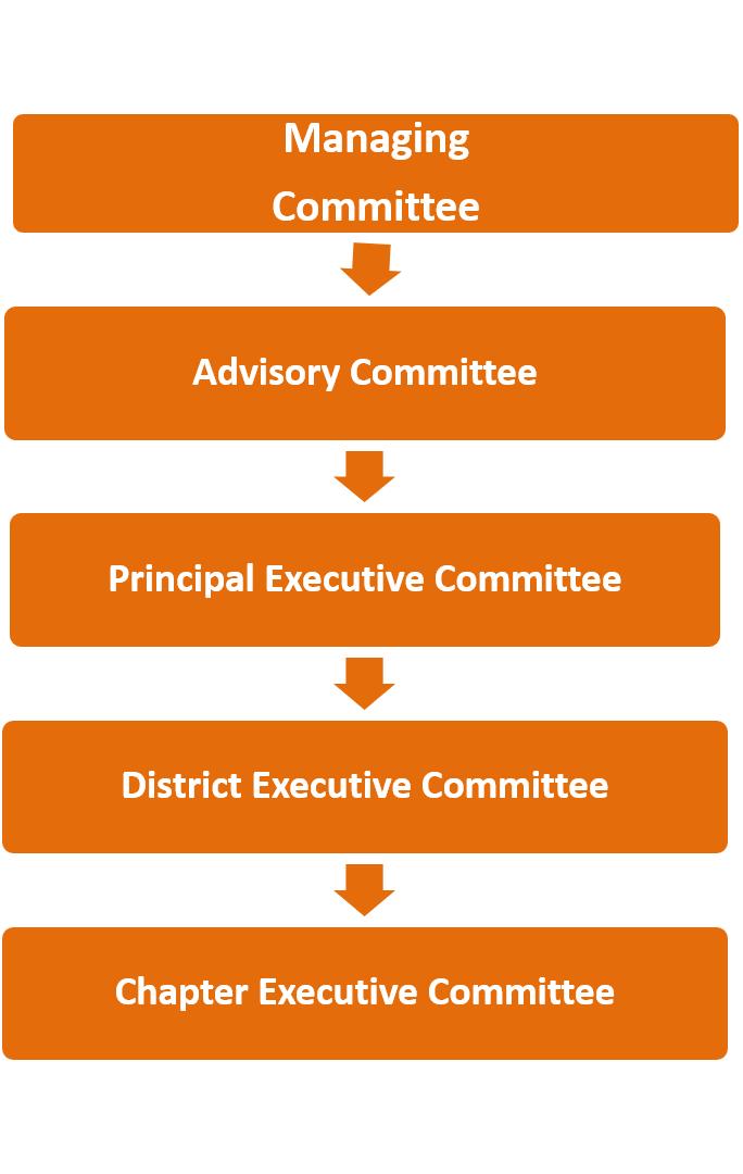 MBF ORGANISATION CHART